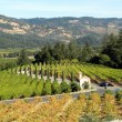 Best bets in Napa and Sonoma